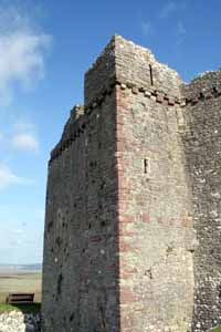 Weobley Castle Gower.jpg